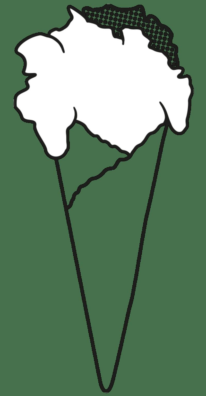 Ilustrace zmrzky